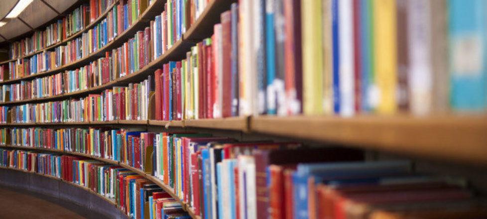 biblioteca articoli rebithing